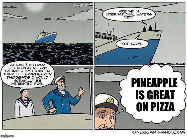 PINEAPPLE IS GREAT ON PIZZA | image tagged in international waters | made w/ Imgflip meme maker