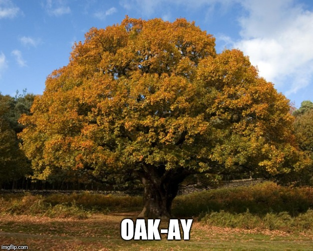 OAK-AY | made w/ Imgflip meme maker