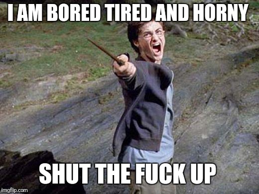 Harry Potter Yelling | I AM BORED TIRED AND HORNY SHUT THE F**K UP | image tagged in harry potter yelling | made w/ Imgflip meme maker