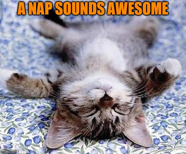 A NAP SOUNDS AWESOME | made w/ Imgflip meme maker