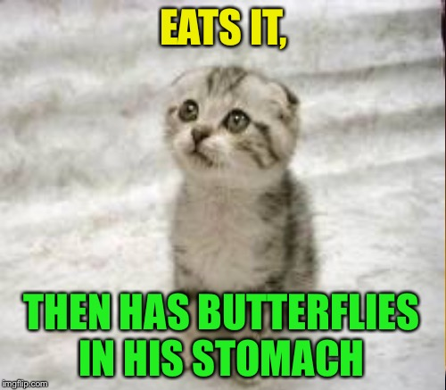 EATS IT, THEN HAS BUTTERFLIES IN HIS STOMACH | made w/ Imgflip meme maker
