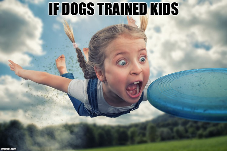 if dogs trained kids | IF DOGS TRAINED KIDS | image tagged in kids,dogs,funny,frisbee | made w/ Imgflip meme maker