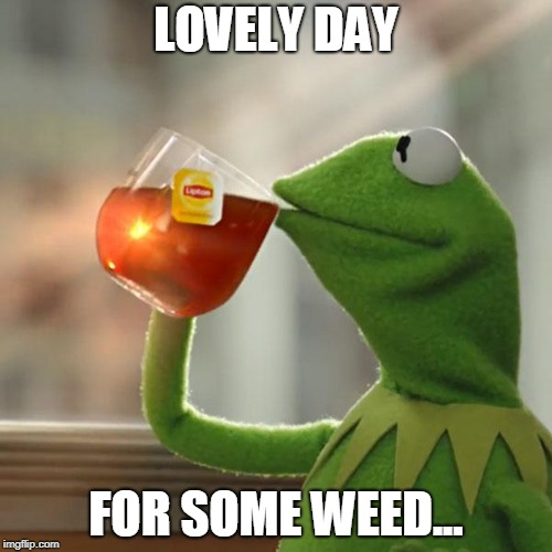 But Thats None Of My Business Meme | LOVELY DAY FOR SOME WEED... | image tagged in memes,but thats none of my business,kermit the frog | made w/ Imgflip meme maker