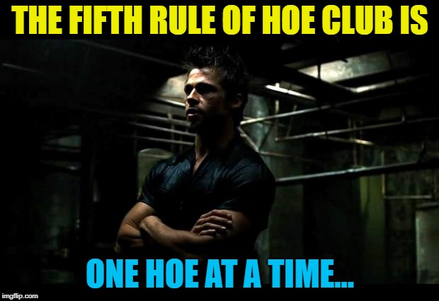 THE FIFTH RULE OF HOE CLUB IS ONE HOE AT A TIME... | made w/ Imgflip meme maker