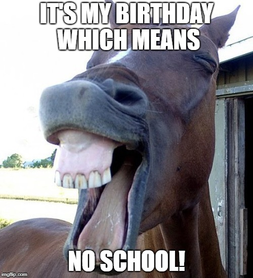 Funny Horse Face | IT'S MY BIRTHDAY WHICH MEANS NO SCHOOL! | image tagged in funny horse face | made w/ Imgflip meme maker