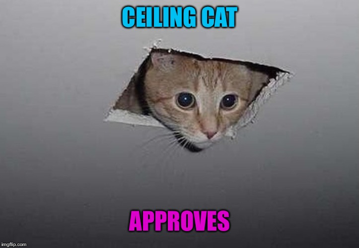 CEILING CAT APPROVES | made w/ Imgflip meme maker