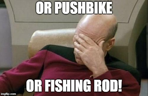 Captain Picard Facepalm Meme | OR PUSHBIKE OR FISHING ROD! | image tagged in memes,captain picard facepalm | made w/ Imgflip meme maker