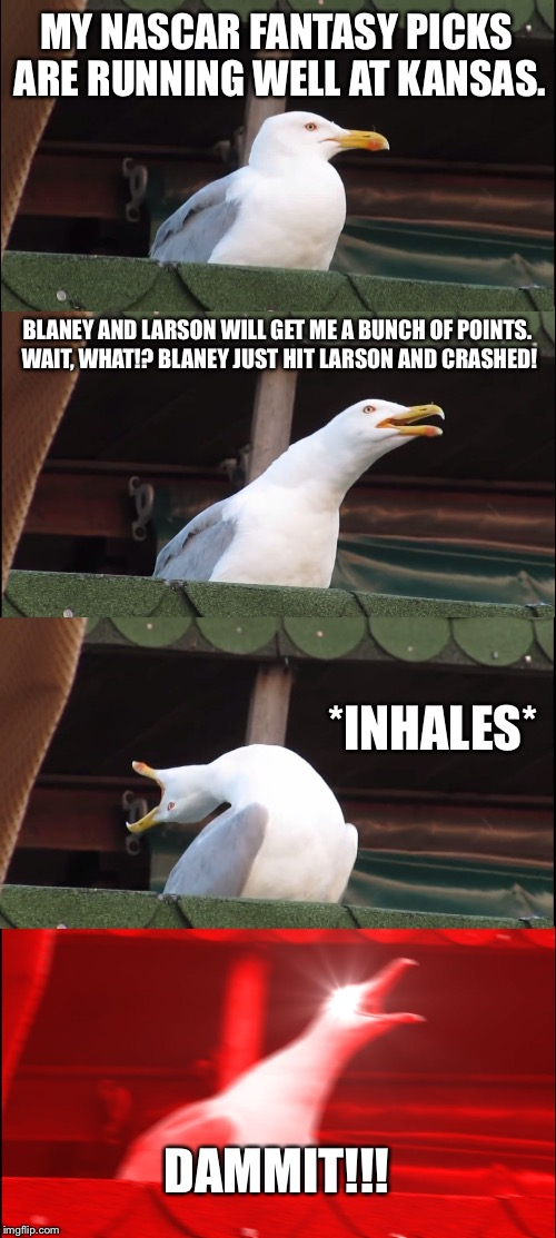 When your NASCAR fantasy drivers take each other out | MY NASCAR FANTASY PICKS ARE RUNNING WELL AT KANSAS. BLANEY AND LARSON WILL GET ME A BUNCH OF POINTS. WAIT, WHAT!? BLANEY JUST HIT LARSON AND | image tagged in memes,inhaling seagull,nascar,car crash,fantasy,that feeling when | made w/ Imgflip meme maker