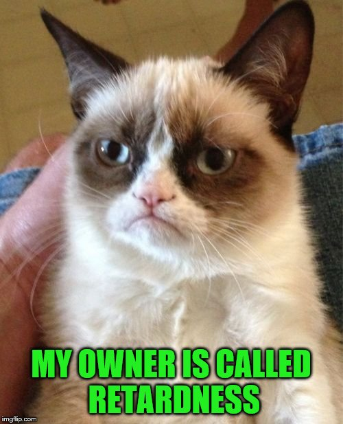 Grumpy Cat Meme | MY OWNER IS CALLED RETARDNESS | image tagged in memes,grumpy cat | made w/ Imgflip meme maker