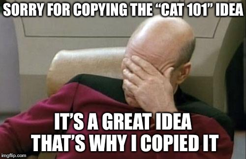 "Captain Picard Facepalm Meme | SORRY FOR COPYING THE ""CAT 101"" IDEA IT'S A GREAT IDEA THAT'S WHY I COPIED IT 