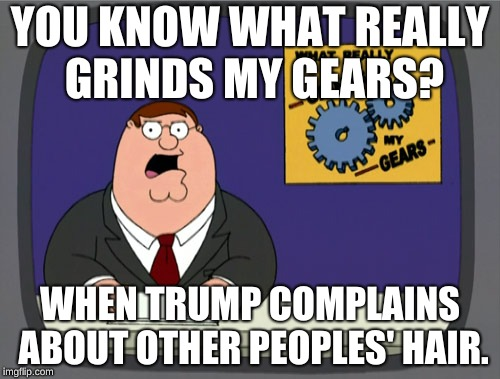 Peter Griffin News Meme | YOU KNOW WHAT REALLY GRINDS MY GEARS? WHEN TRUMP COMPLAINS ABOUT OTHER PEOPLES' HAIR. | image tagged in memes,peter griffin news | made w/ Imgflip meme maker