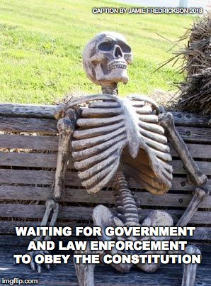 Waiting Skeleton Meme | WAITING FOR GOVERNMENT AND LAW ENFORCEMENT TO OBEY THE CONSTITUTION CAPTION BY JAMIE FREDRICKSON 2018 | image tagged in memes,waiting skeleton | made w/ Imgflip meme maker