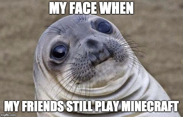 Awkward Moment Sealion Meme | MY FACE WHEN MY FRIENDS STILL PLAY MINECRAFT | image tagged in memes,awkward moment sealion | made w/ Imgflip meme maker