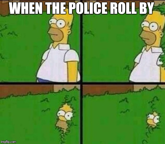 Homer Simpson in Bush - Large | WHEN THE POLICE ROLL BY | image tagged in homer simpson in bush - large | made w/ Imgflip meme maker