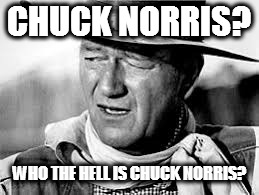 Who the hell is Chuck Norris? | CHUCK NORRIS? WHO THE HELL IS CHUCK NORRIS? | image tagged in chuck norris,chuck norris approves,john wayne comeback,john wayne,john wayne puns | made w/ Imgflip meme maker