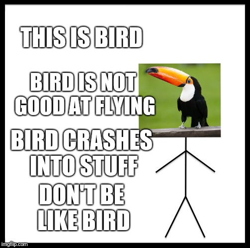 Be Like Bill Meme | THIS IS BIRD BIRD IS NOT GOOD AT FLYING BIRD CRASHES INTO STUFF DON'T BE LIKE BIRD | image tagged in memes,be like bill | made w/ Imgflip meme maker
