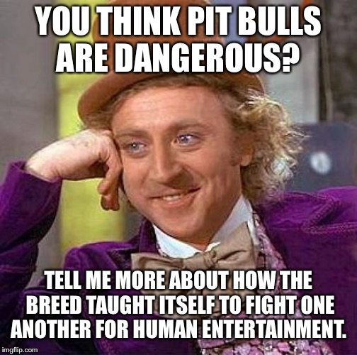 Creepy Condescending Wonka Meme | YOU THINK PIT BULLS ARE DANGEROUS? TELL ME MORE ABOUT HOW THE BREED TAUGHT ITSELF TO FIGHT ONE ANOTHER FOR HUMAN ENTERTAINMENT. | image tagged in memes,creepy condescending wonka | made w/ Imgflip meme maker