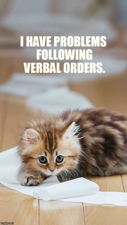 I HAVE PROBLEMS FOLLOWING VERBAL ORDERS. | made w/ Imgflip meme maker