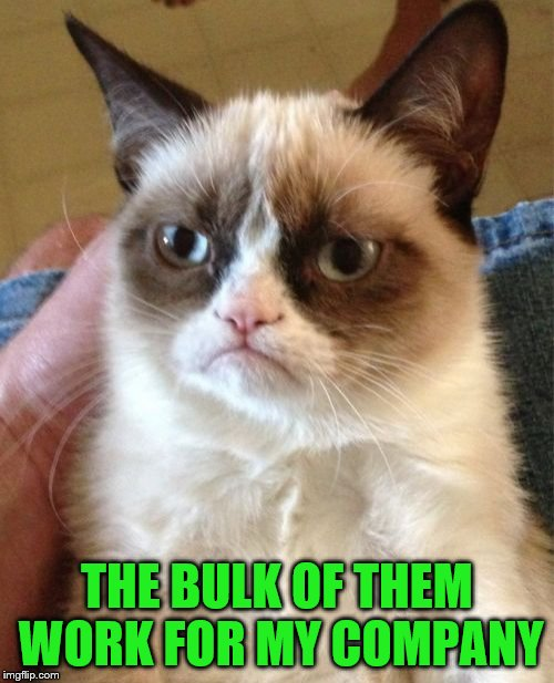 Grumpy Cat Meme | THE BULK OF THEM WORK FOR MY COMPANY | image tagged in memes,grumpy cat | made w/ Imgflip meme maker