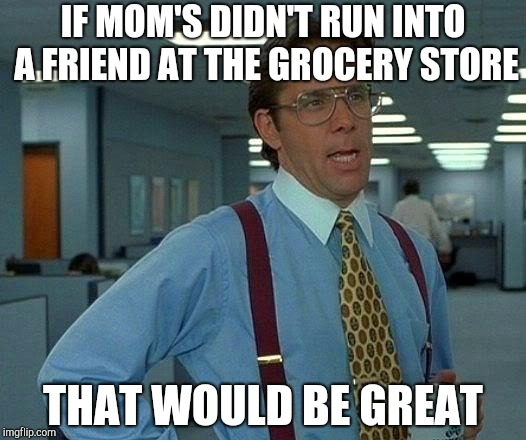 That Would Be Great Meme | IF MOM'S DIDN'T RUN INTO A FRIEND AT THE GROCERY STORE THAT WOULD BE GREAT | image tagged in memes,that would be great | made w/ Imgflip meme maker