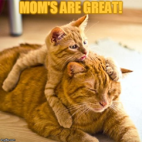 MOM'S ARE GREAT! | made w/ Imgflip meme maker