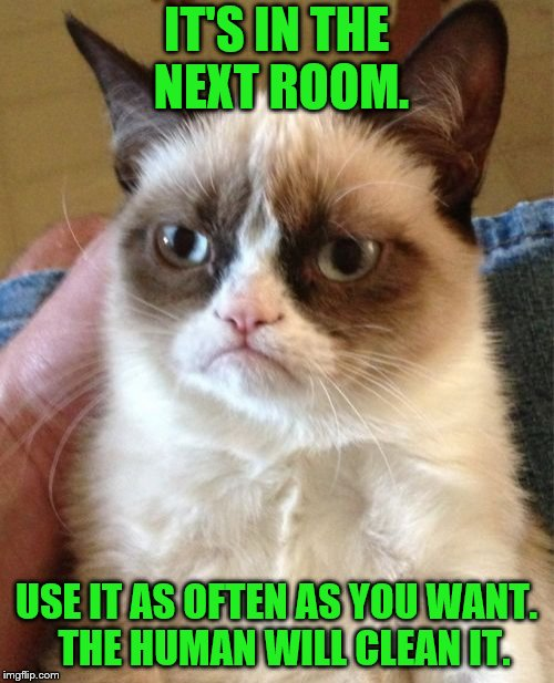 Grumpy Cat Meme | IT'S IN THE NEXT ROOM. USE IT AS OFTEN AS YOU WANT.  THE HUMAN WILL CLEAN IT. | image tagged in memes,grumpy cat | made w/ Imgflip meme maker