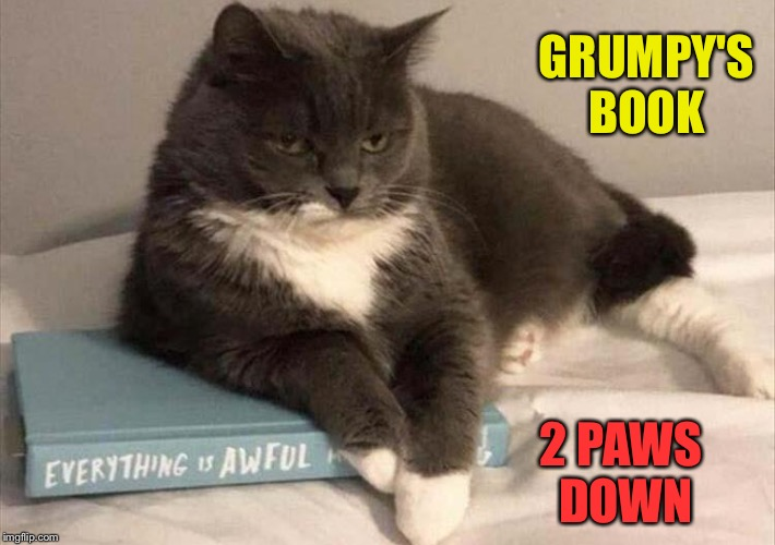 Biography of a mean cat. | GRUMPY'S BOOK 2 PAWS DOWN | image tagged in landon_the_memer,1forpeace,jbmemegeek,cats,memes | made w/ Imgflip meme maker