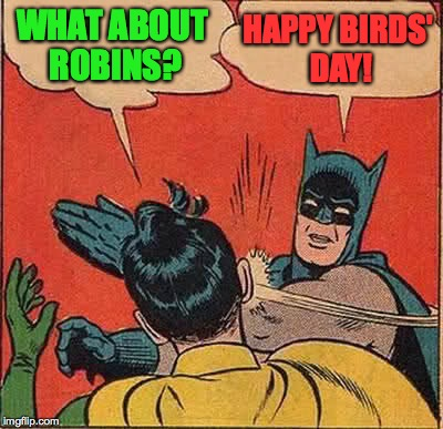 Batman Slapping Robin Meme | WHAT ABOUT ROBINS? HAPPY BIRDS' DAY! | image tagged in memes,batman slapping robin | made w/ Imgflip meme maker