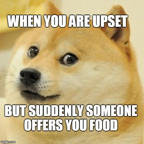 Doge Meme | WHEN YOU ARE UPSET BUT SUDDENLY SOMEONE OFFERS YOU FOOD | image tagged in memes,doge | made w/ Imgflip meme maker