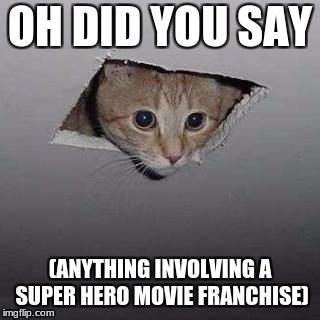 Ceiling Cat Meme | OH DID YOU SAY (ANYTHING INVOLVING A SUPER HERO MOVIE FRANCHISE) | image tagged in memes,ceiling cat | made w/ Imgflip meme maker