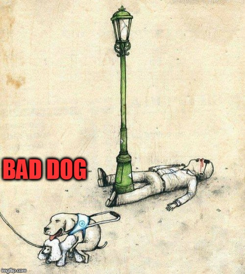 Bad Dog | BAD DOG | image tagged in bad dog,dog,blind man | made w/ Imgflip meme maker