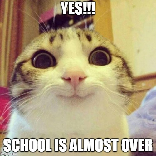 Smiling Cat | YES!!! SCHOOL IS ALMOST OVER | image tagged in memes,smiling cat | made w/ Imgflip meme maker