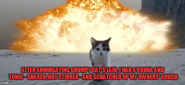 AFTER ANNIHILATING GRUMPY CAT'S LAIR, I HAD A VODKA AND TONIC - SHAKEN, NOT STIRRED - AND SCRATCHED UP MY OWNERS' COUCH | made w/ Imgflip meme maker