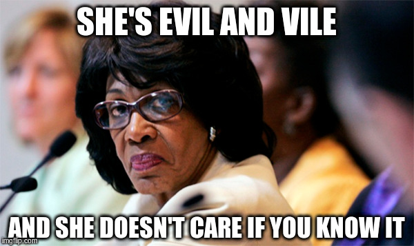 SHE'S EVIL AND VILE AND SHE DOESN'T CARE IF YOU KNOW IT | image tagged in maxine waters | made w/ Imgflip meme maker