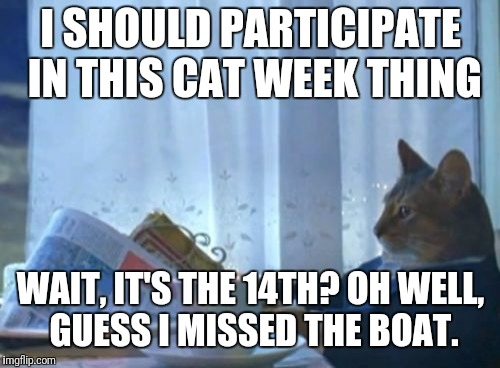 I should've bought a calendar instead of that boat | I SHOULD PARTICIPATE IN THIS CAT WEEK THING WAIT, IT'S THE 14TH? OH WELL, GUESS I MISSED THE BOAT. | image tagged in memes,i should buy a boat cat,cat weekend | made w/ Imgflip meme maker