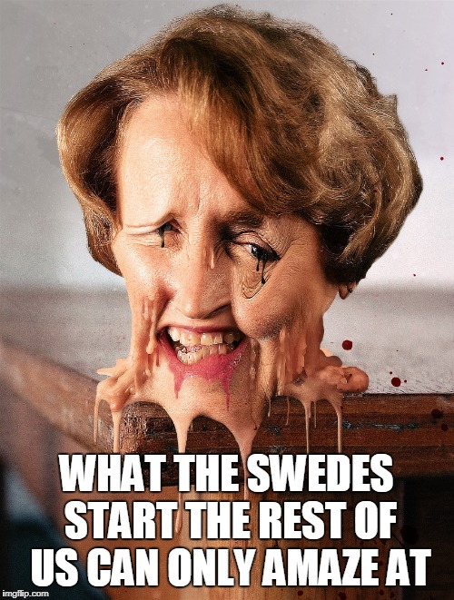 WHAT THE SWEDES START THE REST OF US CAN ONLY AMAZE AT | made w/ Imgflip meme maker