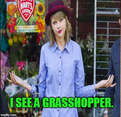 I SEE A GRASSHOPPER. | made w/ Imgflip meme maker