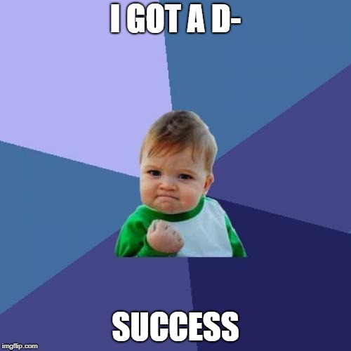 Success Kid Meme | I GOT A D- SUCCESS | image tagged in memes,success kid | made w/ Imgflip meme maker