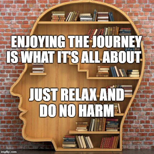 ENJOYING THE JOURNEY IS WHAT IT'S ALL ABOUT JUST RELAX AND DO NO HARM | image tagged in bookshelf head square | made w/ Imgflip meme maker