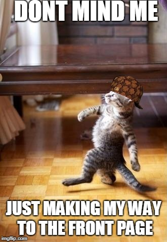 Cool Cat Stroll Meme | DONT MIND ME JUST MAKING MY WAY TO THE FRONT PAGE | image tagged in memes,cool cat stroll,scumbag | made w/ Imgflip meme maker