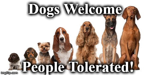 Dogs Welcome People Tolerated! | image tagged in dogs | made w/ Imgflip meme maker