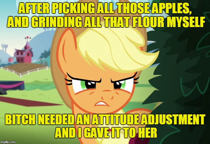 AFTER PICKING ALL THOSE APPLES, AND GRINDING ALL THAT FLOUR MYSELF B**CH NEEDED AN ATTITUDE ADJUSTMENT AND I GAVE IT TO HER | made w/ Imgflip meme maker