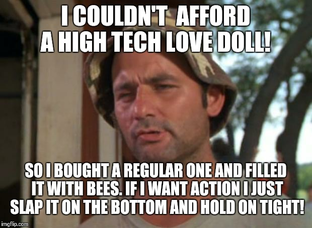 Slap on, slack off! | I COULDN'T  AFFORD A HIGH TECH LOVE DOLL! SO I BOUGHT A REGULAR ONE AND FILLED IT WITH BEES. IF I WANT ACTION I JUST SLAP IT ON THE BOTTOM A | image tagged in memes,so i got that goin for me which is nice | made w/ Imgflip meme maker