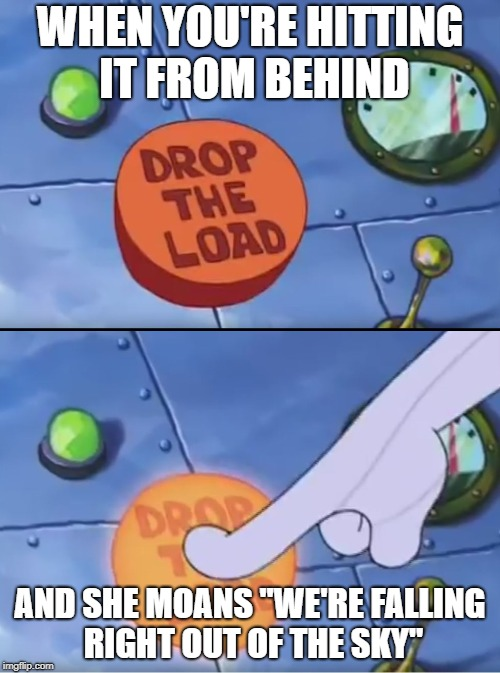 "WHEN YOU'RE HITTING IT FROM BEHIND AND SHE MOANS ""WE'RE FALLING RIGHT OUT OF THE SKY"" 
