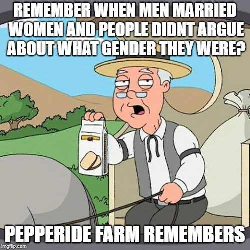 What has our society COME TO!?!? | REMEMBER WHEN MEN MARRIED WOMEN AND PEOPLE DIDNT ARGUE ABOUT WHAT GENDER THEY WERE? PEPPERIDE FARM REMEMBERS | image tagged in memes,pepperidge farm remembers,dumb,stupid people,todaysreality,seriously | made w/ Imgflip meme maker