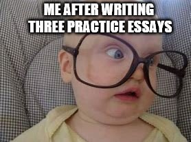 ME AFTER WRITING THREE PRACTICE ESSAYS | image tagged in literature | made w/ Imgflip meme maker