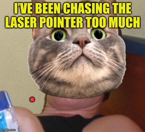 I'VE BEEN CHASING THE LASER POINTER TOO MUCH • | made w/ Imgflip meme maker