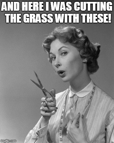 scissors | AND HERE I WAS CUTTING THE GRASS WITH THESE! | image tagged in scissors | made w/ Imgflip meme maker