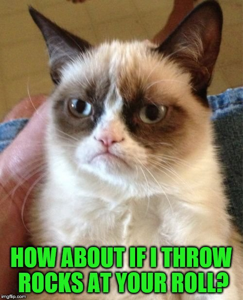 Grumpy Cat Meme | HOW ABOUT IF I THROW ROCKS AT YOUR ROLL? | image tagged in memes,grumpy cat | made w/ Imgflip meme maker