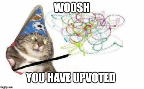 WOOSH YOU HAVE UPVOTED | image tagged in woosh cat | made w/ Imgflip meme maker